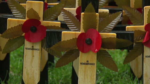 exterior shots of charity workers placing rows of poppy decorated crosses in the grounds of westminster abbey, preparing the 'field of remembrance'... - remembrance sunday stock videos & royalty-free footage