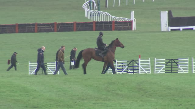 exterior shots of cheltenham race course with a few horses being put through their paces and course keepers walking around and inspecting the muddy... - cheltenham racecourse stock videos and b-roll footage