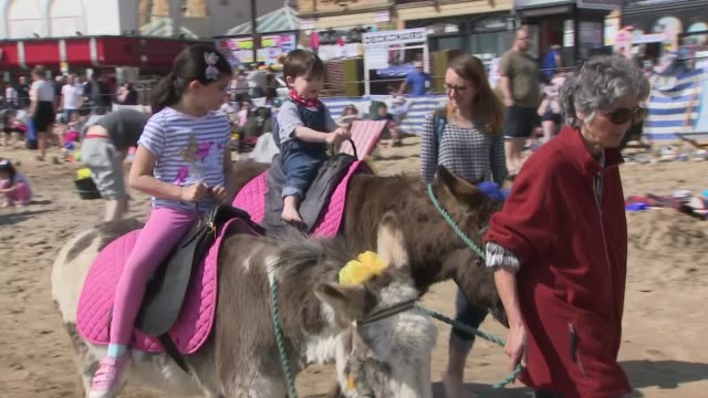 vídeos de stock e filmes b-roll de exterior shots of children ridding donkeys on the beach on 20th april 2019 in scarborough england - scarborough reino unido