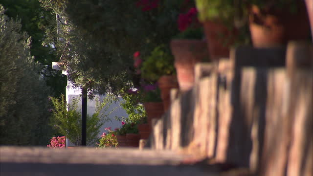Exterior shots of Cliff Richard's Quinta do Moinho wine estate through gates with a paved tree lined pathway and a stone statue of a woman on August...