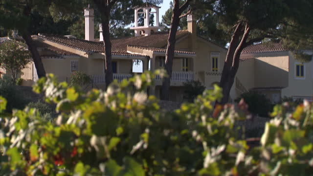 Exterior shots of Cliff Richard's Quinta do Moinho wine estate with grapes growing on vines luxury villa and Cliff's 'Sing a new Song' coat of arms...