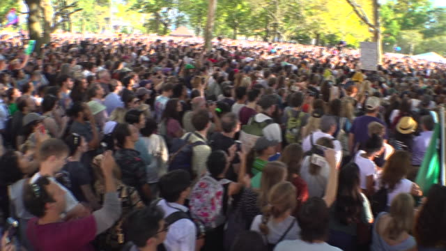 exterior shots of climate strike protesters listening to a speech by greta thunberg on 20th september 2019 in new york united states - listening stock videos & royalty-free footage