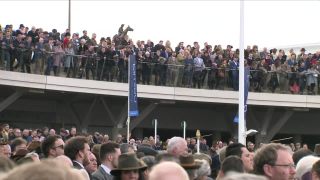vídeos de stock, filmes e b-roll de exterior shots of crowds at the cheltenham festival on gold cup day stood in stands ahead of the race on 16 march 2018 in cheltenham united kingdom - cheltenham