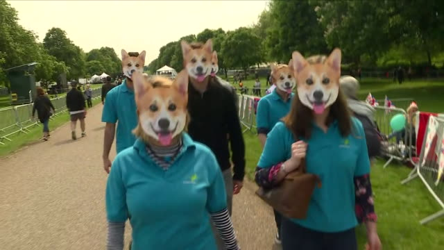 Exterior shots of crowds starting the celebrations of the Royal Wedding weekend including cut out cardboard queen Corgi faces union flag waving...
