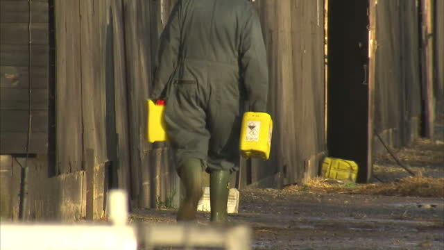 exterior shots of defra workers in full contamination suits at closed bio hazard farm site on november 18, 2014 in nafferton, england. - virus dell'influenza aviaria video stock e b–roll