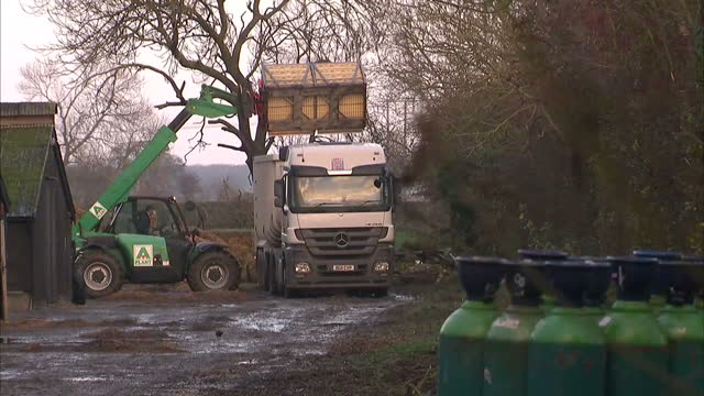 vídeos de stock e filmes b-roll de exterior shots of defra workers loading cages of dead birds into truck at nafferton farm on november 18 2014 in nafferton england - vírus da gripe aviária