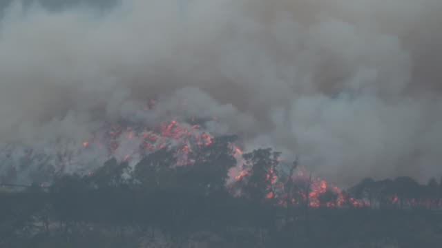 exterior shots of eden coastline with wildfire burning in distance on january 05 2020 eden australia - australia stock videos & royalty-free footage