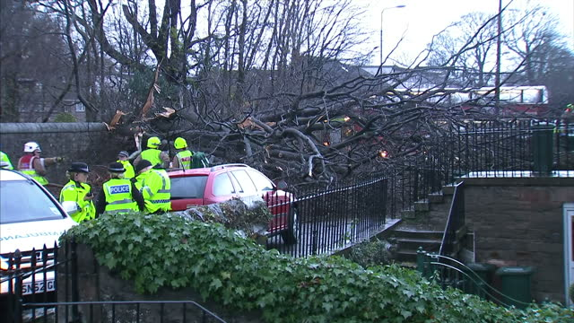 exterior shots of emergency services workers at the scene of where a large tree has fallen through a wall and onto parked cars in an edinburgh street... - 2013 stock videos & royalty-free footage