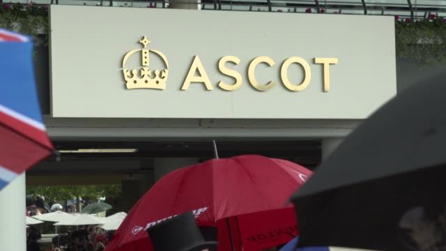 exterior shots of fans looking at betting slips at royal ascot shot on 19 june 2019 berkshire, england - ロイヤルアスコット点の映像素材/bロール