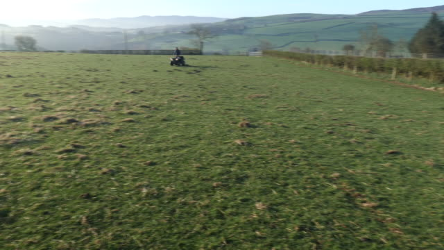 exterior shots of farmer on a quad bike with sheep dogs on the back and gvs sheep and sheepdogs watching sheep on 1 april 2020 in corwen, united... - livestock stock videos & royalty-free footage