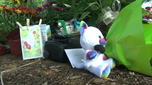 exterior shots of flowers and messages of sympathy left by roadside and a mourner leaving her own tribute after the killing of alison parker and adam... - allison parker stock-videos und b-roll-filmmaterial