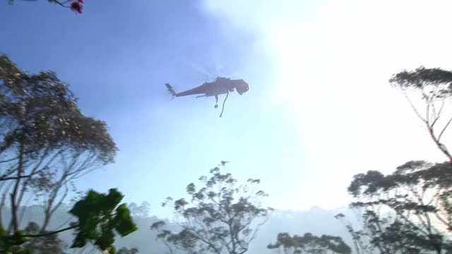 Exterior shots of helicopters dropping water over bushfires in the Blue Mountains near Sydney Helicopters Douse Bushfires in the Blue Mountains on...