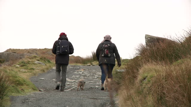 exterior shots of hikers walking up the path to mt snowdon on december 02 2016 in llanberis united kingdom - snowdonia stock videos & royalty-free footage