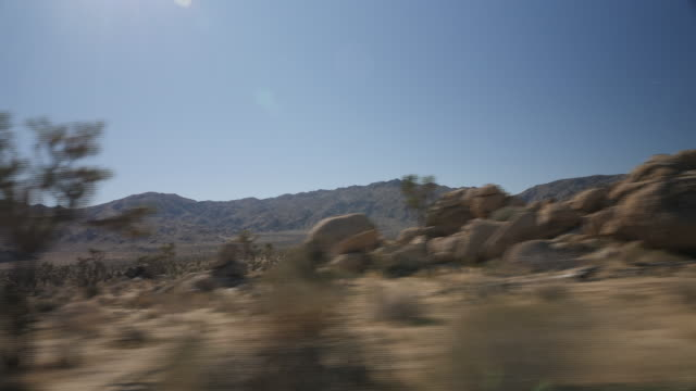 exterior shots of joshua trees, desert, sun and desert view from car window whilst driving at joshua tree national park on 3 january 2019 in... - desert stock videos & royalty-free footage