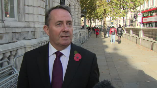 exterior shots of liam fox mp secretary of state for international trade interview on his way to cabinet office on 8th november 2018 in london england - liam fox politician stock videos and b-roll footage