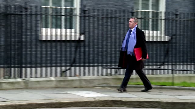 exterior shots of liam fox mp walking to 10 downing street on 31 january 2018 in london united kingdom - liam fox politician stock videos and b-roll footage