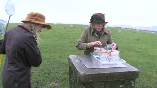 exterior shots of melanie de watts and francesca de watts air harvesters waving nets in the air and scooping it into kilner jars in the dorset... - offbeat stock videos and b-roll footage