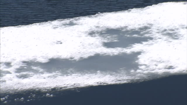 exterior shots of melting ice floes and drift ice in the north west passage. on august 25, 2007 in cambridge bay, canada. - arctic stock videos & royalty-free footage