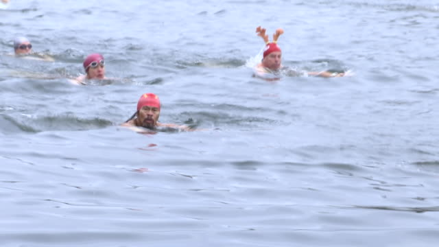 exterior shots of people swimming in the waters of serpentine lake in london's hyde park during the annual peter pan cup on christmas day on 25... - エキセントリック点の映像素材/bロール