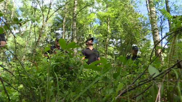 exterior shots of police officers carrying out a missing person search in woodland on 12 may 2020 in farnham england - missing people stock videos & royalty-free footage