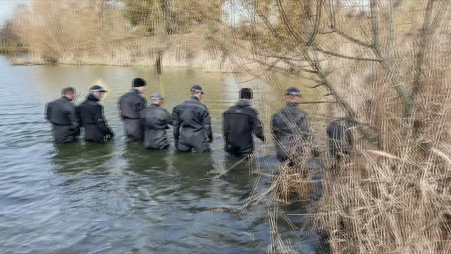 exterior shots of police searching through reeeds at the side of a pond in a clapham park and wading through pond in the hunt for missing sarah... - walking in water stock videos & royalty-free footage
