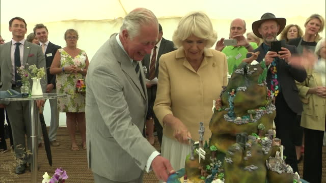 exterior shots of prince charles and camilla, duchess of cornwall cutting a cake and meeting people on exmoor to mark the 70th anniversary of the... - コーンウォール公爵夫人 カミラ点の映像素材/bロール