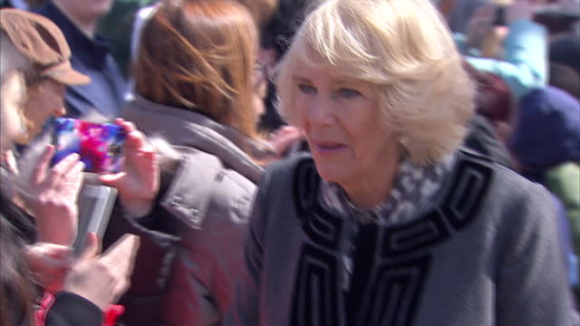 exterior shots of prince charles and camilla, duchess of cornwall speaking to members of the public during a visit to mount vernon.>> on march 18,... - バージニア州マウントヴァーノン点の映像素材/bロール