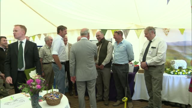 exterior shots of prince charles meeting people and drinking tea at a farm in exmoor to mark the 70th anniversary of the formation of national parks... - exmoor national park stock videos & royalty-free footage
