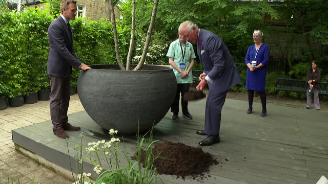 exterior shots of prince charles, prince of wales, listeninng to speech during visit to chelsea and westminster hospital and planting a tree on 17th... - plant stock videos & royalty-free footage