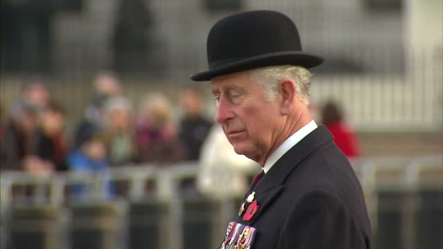 exterior shots of prince charles raising his hat in salute as veterans parade past after a wreath laying ceremony at the guards' memorial on november... - 懷念日 個影片檔及 b 捲影像