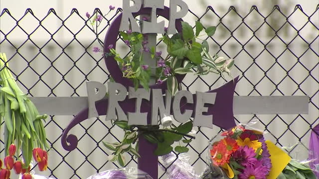 exterior shots of prince fans paying their respects at a memorial wall outside paisley park, and tributes left along the fence - purple balloons,... - prince stock videos & royalty-free footage