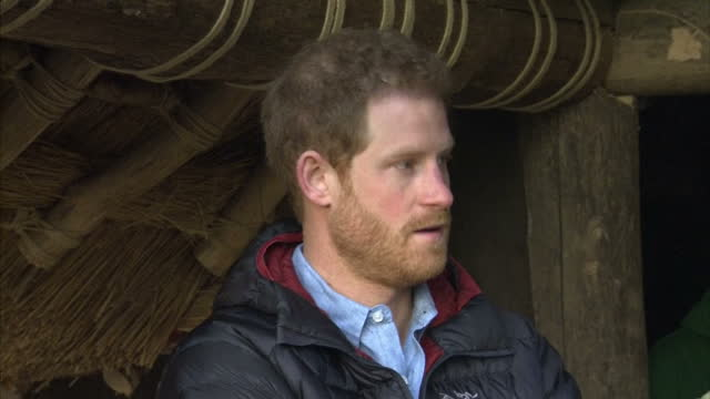 exterior shots of prince harry meeting injured servicemen at a help for heroes centre who are working on thatching a woodland hut on january 23, 2017... - tidworth stock videos & royalty-free footage