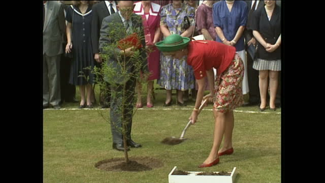 exterior shots of princess diana greeting crowds and planting a tree to commemorate her visit on june 29, 1992 at hillsborough castle in county down,... - ulster province stock videos & royalty-free footage