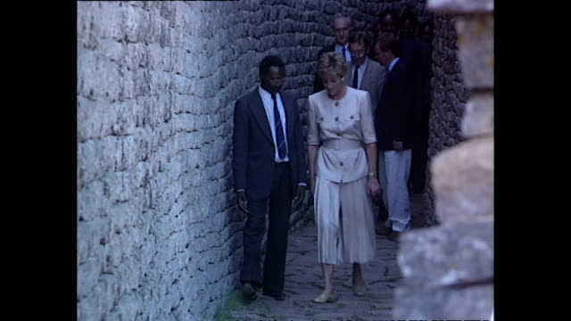 exterior shots of princess diana, princess of wales, being shown round the great zimbabwe ruins during her royal tour on 10 july 1993, unspecified,... - conceptual symbol stock videos & royalty-free footage