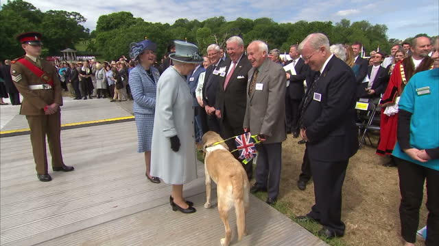 vídeos de stock e filmes b-roll de exterior shots of queen elizabeth ii meeting sculptor hew locke and various other people involved with the magna carta anniversary event, shaking... - magna carta documento histórico