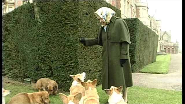 Exterior shots of Queen Elizabeth II showing off her Corgi dogs naming them and giving them treats