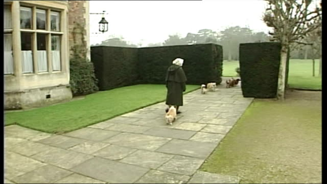 exterior shots of queen elizabeth ii walking out of palace doors with corgi's running out before her and walking around buckingham palace grounds - königin elisabeth ii. von england stock-videos und b-roll-filmmaterial