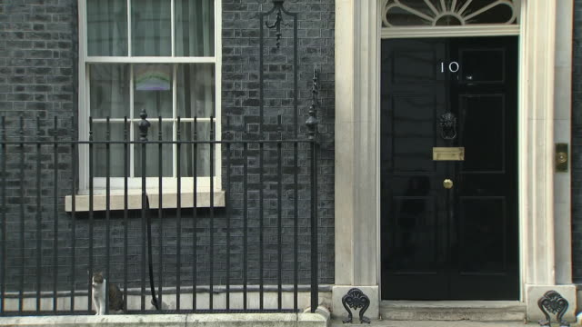 exterior shots of rainbow drawing in 10 downing street window during the covid-19 outbreak on 8 april 2020 in london, united kingdom - 10 downing street stock videos & royalty-free footage