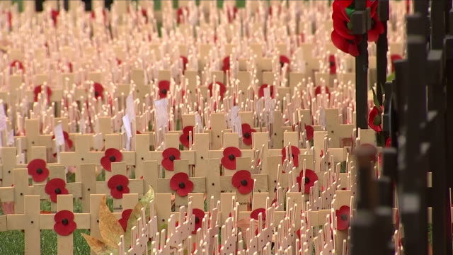 exterior shots of remembrance day poppies in front of westminster abbey on 8th november 2018 in london england - remembrance day stock videos and b-roll footage