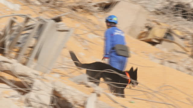 exterior shots of search and rescue team and sniffer dog searching rubble in beirut after port of beirut explosion on 5th august 2020 beirut, lebanon. - rescue worker stock videos & royalty-free footage