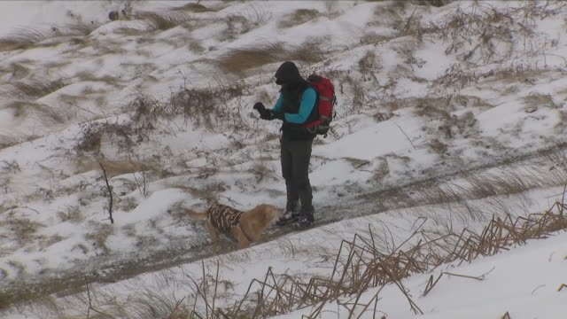 vídeos y material grabado en eventos de stock de exterior shots of snowfall on fields and hills including shots of a man walking his dog and people walking near a stranded coach that got stuck in... - rochdale inglaterra