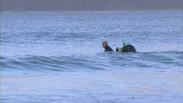 exterior shots of surfers surfboarding in the water on december 21 2016 in truro england - old diving suit stock videos and b-roll footage