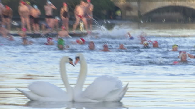 exterior shots of swimmers in the annual christmas day swim in the serpentine in hyde park on 25th december 2019 in london england - the serpentine london stock videos & royalty-free footage