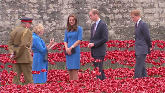 exterior shots of the duke and duchess of cambridge and walking through ceramic poppies planted in the grounds at the tower of london - the 'blood... - 100. jahrestag stock-videos und b-roll-filmmaterial