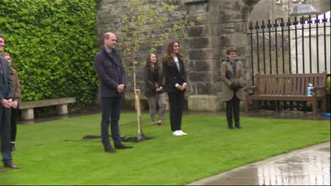 exterior shots of the duke and duchess of cambridge planting a tree sapling in the grounds of st andrews university on 27th may 2021, united kingdom - dance studio stock videos & royalty-free footage
