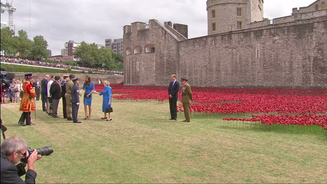 exterior shots of the duke of cambridge / prince william being shown part of the poppy art in the grounds of the tower of london by general lord... - peerage title stock videos & royalty-free footage