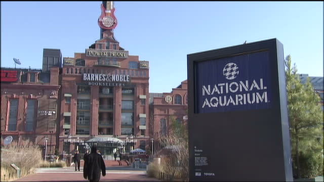 exterior shots of the pratt street pavilion and pratt street power plant shopping and entertainment attractions in the inner harbor area of... - hafen von baltimore stock-videos und b-roll-filmmaterial