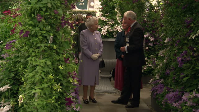 exterior shots of the queen and prince philip, duke of edinburgh arriving at and greeting people at the chelsea flower show at royal hospital... - chelsea flower show stock videos & royalty-free footage