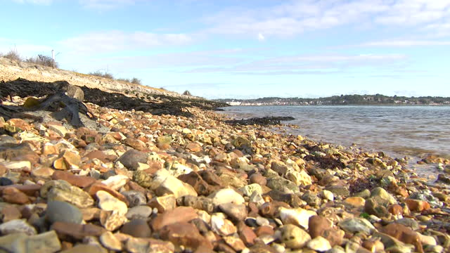 exterior shots of the shores of brownsea island and sea birds wading on 5 march 2021 in poole, united kingdom - walking in water stock videos & royalty-free footage