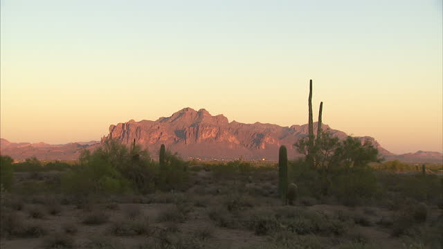 exterior shots of the sonoran desert landscape at sunset including saguaro cacti silhouetted against the sky - cactus sunset stock videos & royalty-free footage